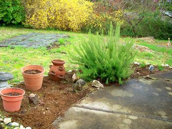 Herb Garden After